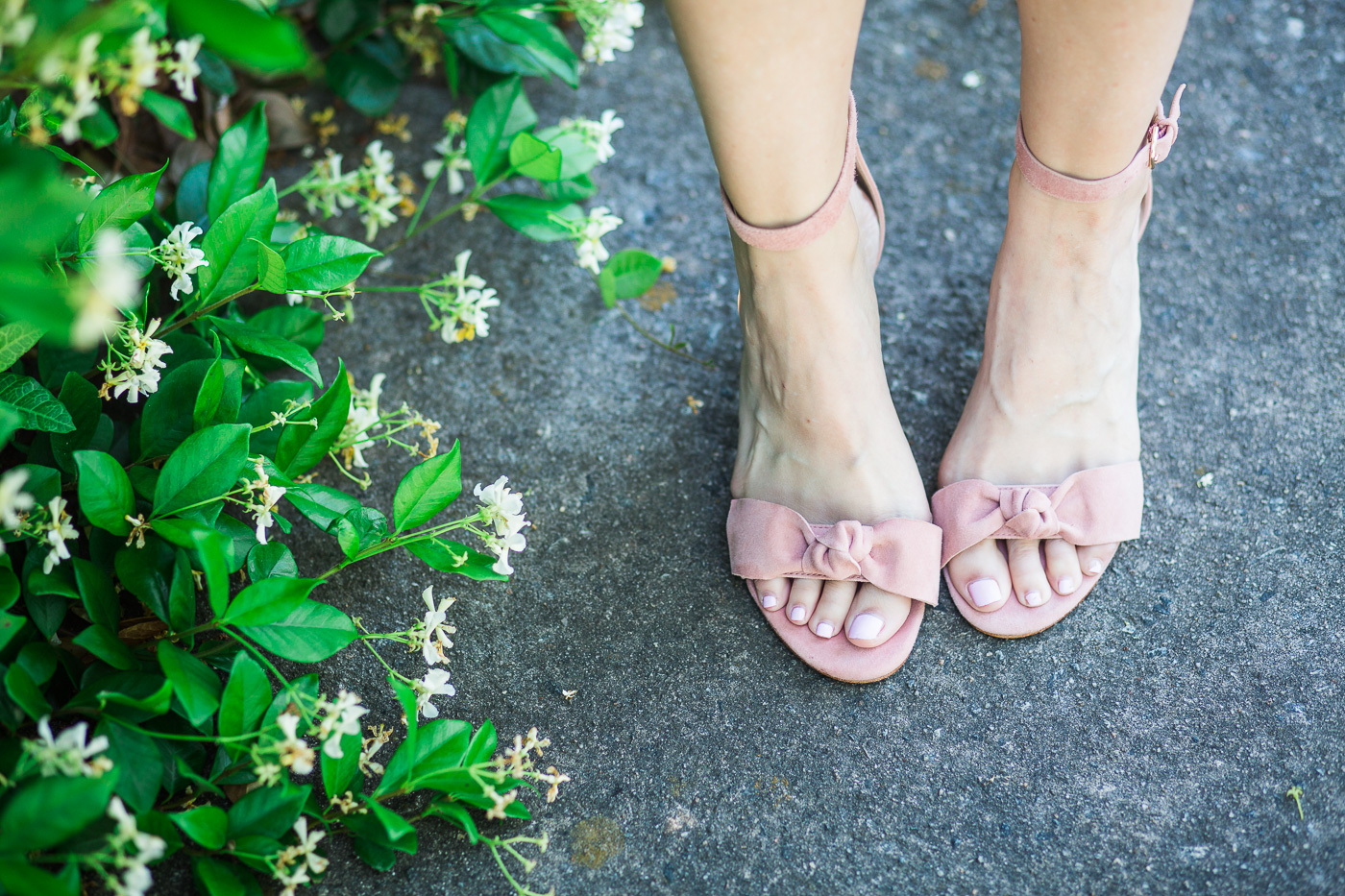 erica suede bow sandals ann Taylor